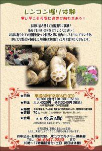 【12月】レンコン掘り体験