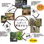 有機循環農法